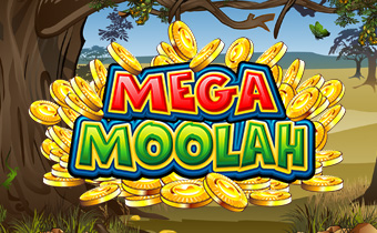 Mega Moola Casino Game